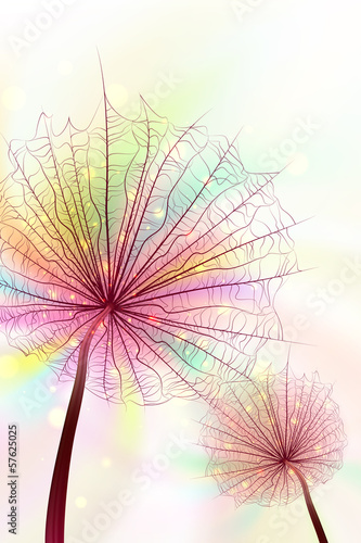 rainbow-dandelions