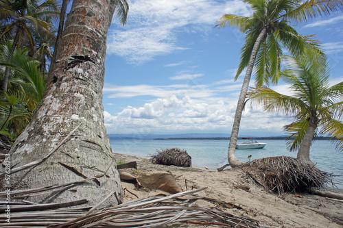 Fototapeten,strand,küste,bellen,sand