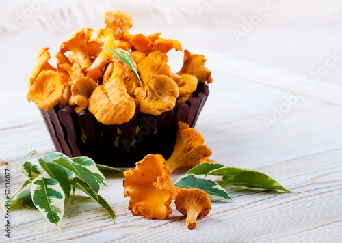 Chanterelle mushrooms in a basket with forest leaves