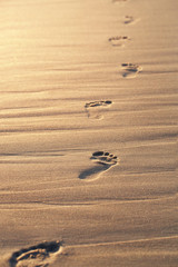 Close up of footprints on the beach sand at the sunset with copy
