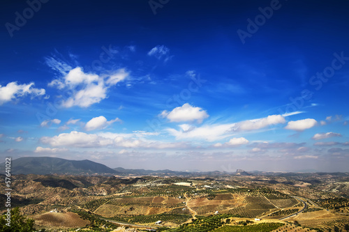 Olive groves in Olvera, Cadiz (Andalusia), Spain.