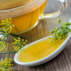 Fenchel - Tee und Fenchelhonig
