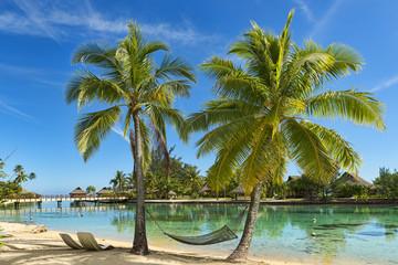 Französisch-Polynesien-Moorea-6563