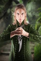 Elf protector