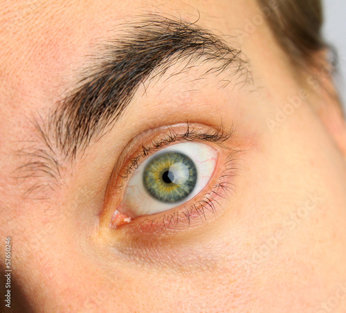 wide open human eye and eyebrow