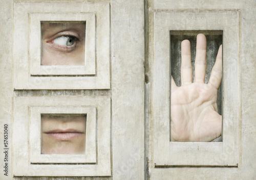 Fototapeta Let me out
