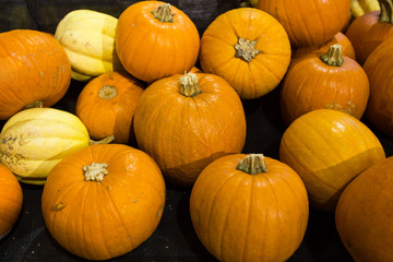 Pumpkins in food store