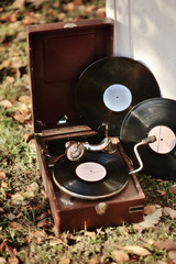 on the grass with autumn leaves old gramophone with plates