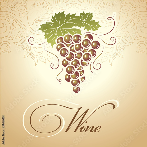 Wine. Bunch of grapes for labels of wine. Vintage  labels