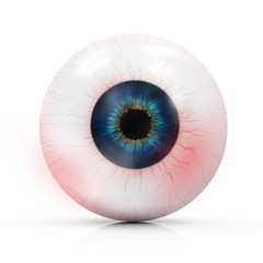 Human Red Eye isolated on white background
