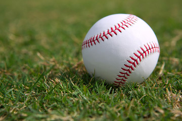 Baseball on the Outfield Grass
