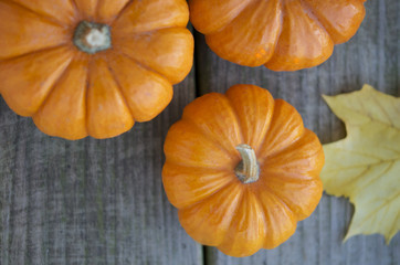Pumpkins on the rustic wood