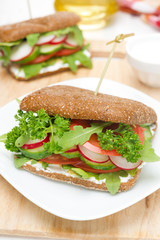 sandwich with cottage cheese, greens and vegetables close-up