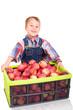Kleiner Apfelbauer