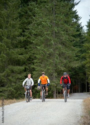 Gruppe Mountainbiker auf Forstweg