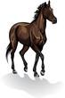 Vector of brown horse