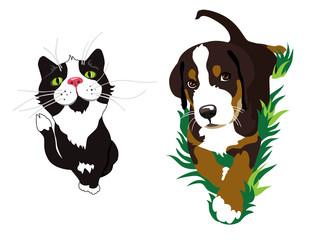 Cat and dog. Illustration. Isolated on white background