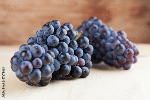 Blue grape clusters