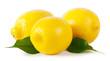 Three ripe lemons with leaves