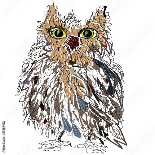 Owl on a white background, vector illustration.