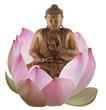 bouddha bois assis dans une fleur rose de lotus