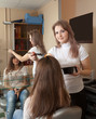 Hairdresser dye  long-hair