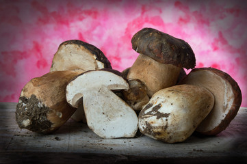 Forest mushrooms - Boletus edulis