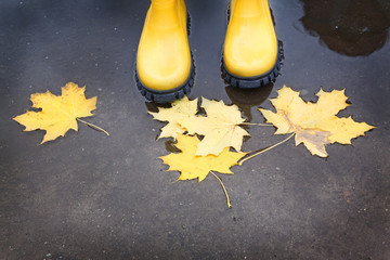 Yellow rubber boots in a puddle of autumn