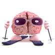 Brain on winter holiday