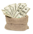 dollars in bag