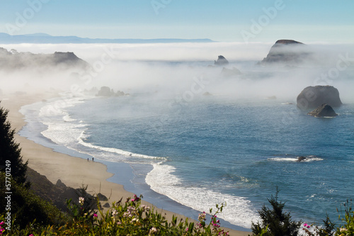morning fog along coast at Brookings, Oregon