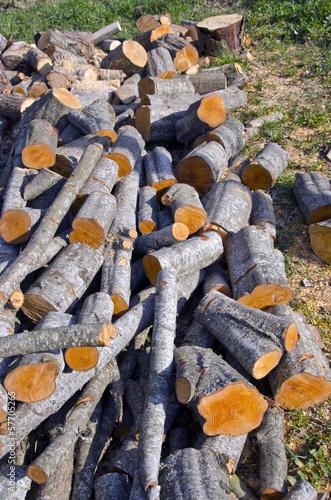 alder firewood in farm