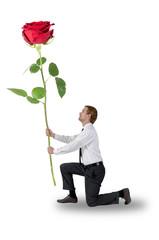 Mann kniend eine Rose haltend