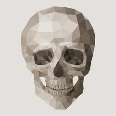 Polygonal vector skull.