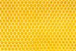honey in honeycomb background - 57707620