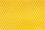 honey in honeycomb background