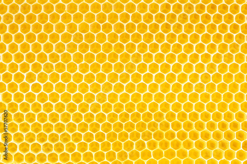 Staande foto Textures honey in honeycomb background