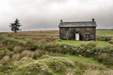 Fototapeta Abandoned Farmhouse On A Stormy Day in Dartmoor