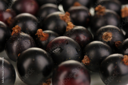 Fresh black currant close up