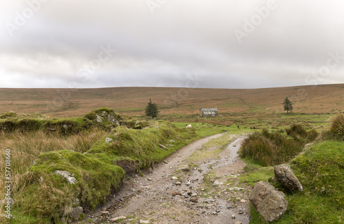 A track leading across Dartmoor in Devon