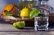 tequila and citrus fruits