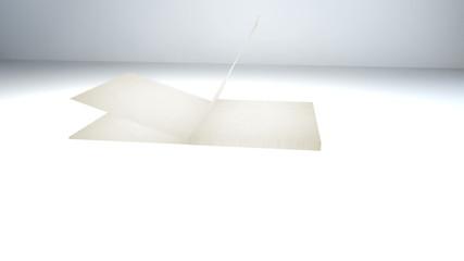 white book 01