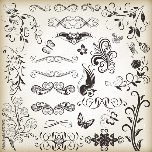 Floral vintage vector design elements
