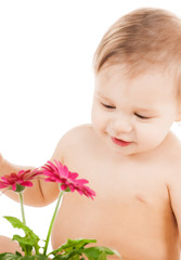cute little boy playing with flower