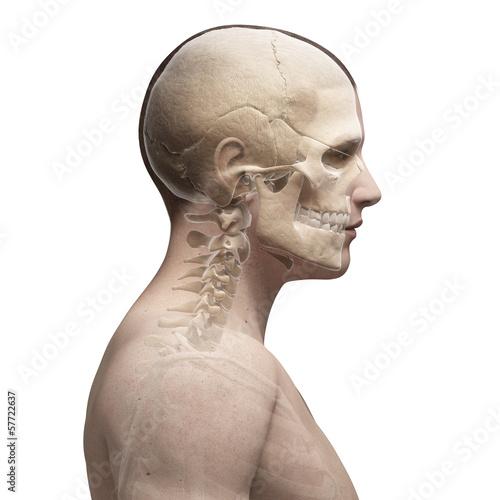 guy bending his neck