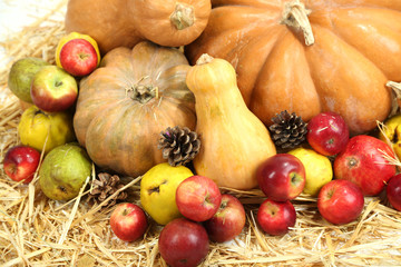 Autumn composition of fruits and pumpkins on straw close-up