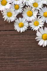 Gänseblümchen, Alles Liebe, Muttertag, Frühling, Grußkarte