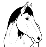 Outline Horse On White Background