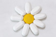 camomile flower with pills, natural medicines for human health