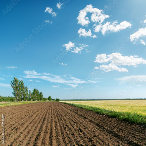 landscape with plowed field under light clouds